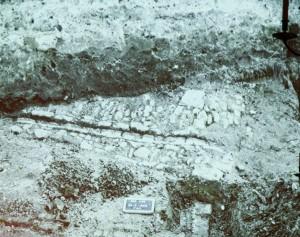 Een deels uitgegraven middeleeuws straatje dat opmerkelijk genoeg ligt in het verlengde van de huidige NZ Haven.