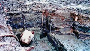 Een opgraving bij Emmeloord toont aan dat de weervisserij al duizenden jaren geleden in deze omgeving werd gebruikt